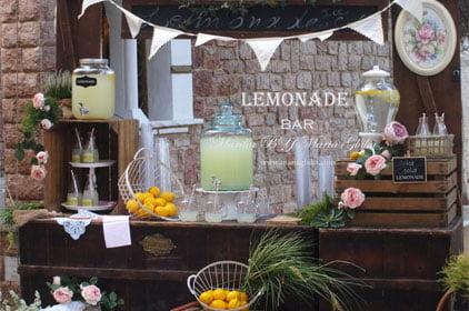 Vintage Lemonade BAR